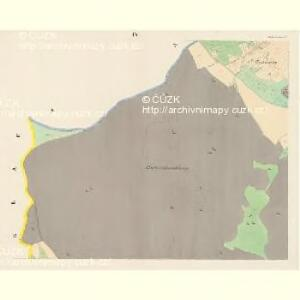 Gross Czekau - c0785-1-008 - Kaiserpflichtexemplar der Landkarten des stabilen Katasters