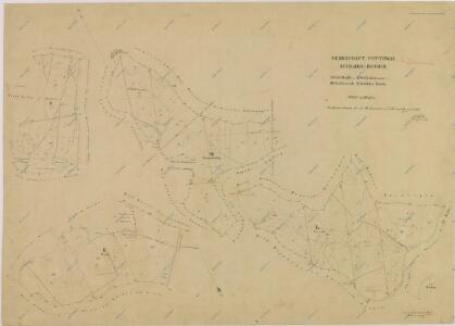 Brouillon hospodářské mapy polesí Zámecký-lesní úseky Radlice, Kalinova, Lejsek, a u Rudy 1