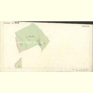 Mitterberg - c6304-2-005 - Kaiserpflichtexemplar der Landkarten des stabilen Katasters