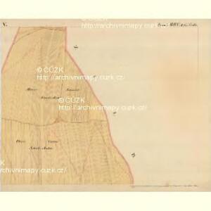 Mitzmanns - m1778-1-005 - Kaiserpflichtexemplar der Landkarten des stabilen Katasters