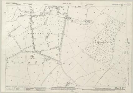 Buckinghamshire VII.16 (includes: Biddlesden) - 25 Inch Map