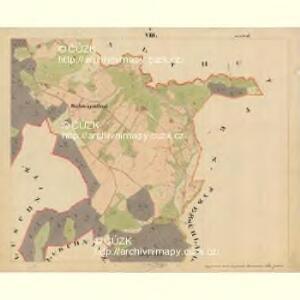 Beneschau - c0113-2-008 - Kaiserpflichtexemplar der Landkarten des stabilen Katasters