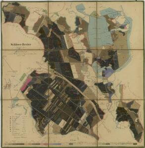 Porostní mapa polesí Zámecké 1
