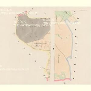 Radkowitz (Radkowicz) - c6356-1-002 - Kaiserpflichtexemplar der Landkarten des stabilen Katasters