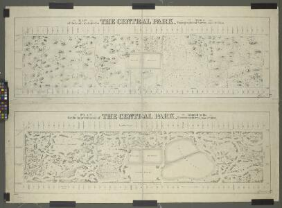 Map of the lands included in the Central Park, from a topographical survey, June 17th, 1856; [Also:] Plan for the improvement of the Central Park, adopted by the Commissioners, June 3rd, 1856.