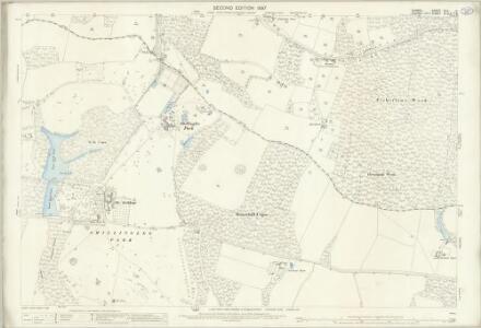 Surrey XLV.11 (includes: Chiddingfold; Plaistow) - 25 Inch Map