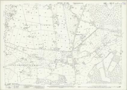Surrey XLII.10 (includes: Burstow; Horne; Worth) - 25 Inch Map