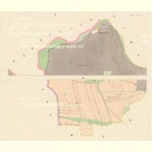 Pawlowitz (Pawlowice) - c5668-1-001 - Kaiserpflichtexemplar der Landkarten des stabilen Katasters