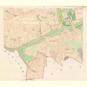 Petrowitz (Petrowicz) - c5728-1-004 - Kaiserpflichtexemplar der Landkarten des stabilen Katasters