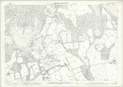 Surrey XXXIX.4 (includes: Ewhurst) - 25 Inch Map