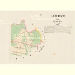 Mühlbach - c6004-5-002 - Kaiserpflichtexemplar der Landkarten des stabilen Katasters