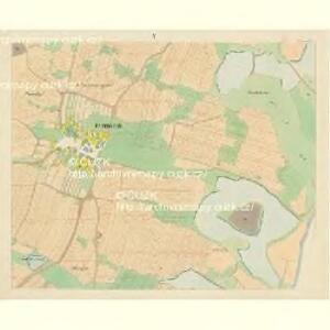 Domanin - c1424-1-005 - Kaiserpflichtexemplar der Landkarten des stabilen Katasters