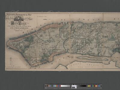 Sanitary and topographical map of the City and Island of New York ; prepared for the Council of Hygeine and Public Health of the Citizens Association under the direction of Egbert L. Viele, Topographical Engineer.