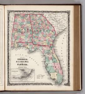 Georgia, Alabama, and Florida.