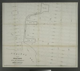 Plan for the drainage of that part of the city of Brooklyn which empties its water into Gowanus Creek & Bay / by Daniel Richards, Oct. 1848 ; Willard Day, city surveyor.