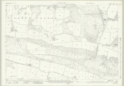 Dorset LVI.3 (includes: Corfe Castle) - 25 Inch Map