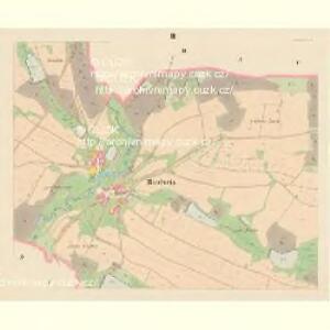 Riedweis - c6495-1-003 - Kaiserpflichtexemplar der Landkarten des stabilen Katasters