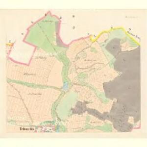 Tedraschitz (Tedrazitz) - c7845-1-002 - Kaiserpflichtexemplar der Landkarten des stabilen Katasters