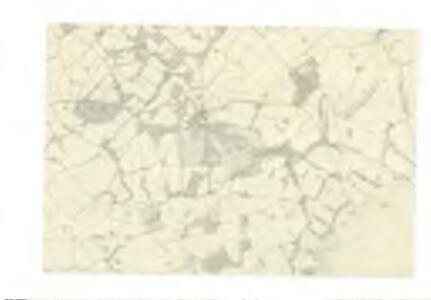 Haddingtonshire, Sheet 15 - OS 6 Inch map