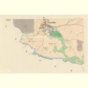 Patschiw (Patčjwo) - c5617-1-004 - Kaiserpflichtexemplar der Landkarten des stabilen Katasters