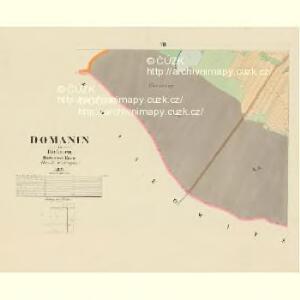 Domanin - c1424-1-006 - Kaiserpflichtexemplar der Landkarten des stabilen Katasters