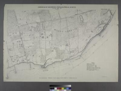 Sheet Nos. 99 & 100.[Include Mount Loretto, Red Bank and Princess Bay Light.]; Borough of Richmond, Topographical Survey.
