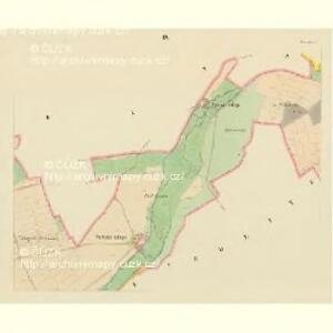 Taus (Domazlice) - c1433-1-007 - Kaiserpflichtexemplar der Landkarten des stabilen Katasters