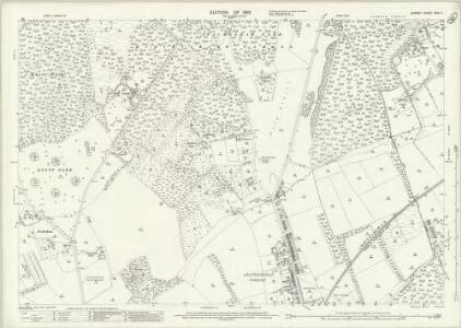 Surrey XVIII.11 (includes: Leatherhead) - 25 Inch Map