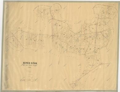 Porostní mapa polesí Olšany