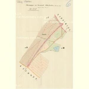Mikulschitz (Mikulčzice) - m1784-1-006 - Kaiserpflichtexemplar der Landkarten des stabilen Katasters