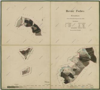 Porostní mapa polesí Borovany 1
