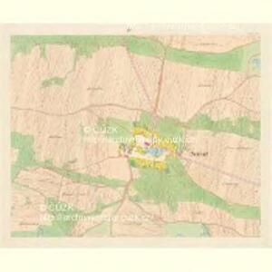 Neudorf - c7999-1-003 - Kaiserpflichtexemplar der Landkarten des stabilen Katasters