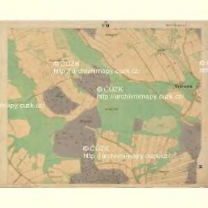 Böhm. Gillowitz - c2059-2-007 - Kaiserpflichtexemplar der Landkarten des stabilen Katasters