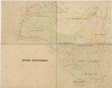 Mapy lesních porostů svěřeneckého panství Kout - revír Filipova Hora