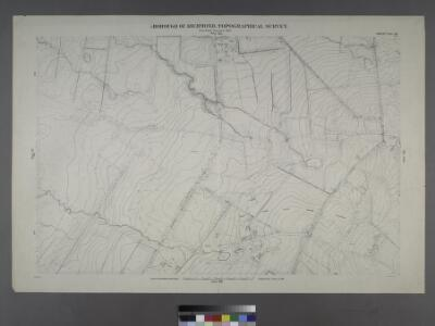 Sheet No. 38. [Includes Port Richmond Road, Manor Road, Bradley Avenue and Gun Factory Road.]; Borough of Richmond, Topographical Survey.
