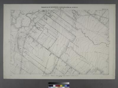 Sheet No. 45. [Includes New Springville, Bridge Avenue, Old Stone Road and Richmond Road.]; Borough of Richmond, Topographical Survey.