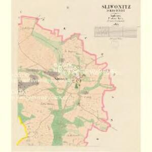 Sliwonitz (Sliwonic) - c7043-1-002 - Kaiserpflichtexemplar der Landkarten des stabilen Katasters