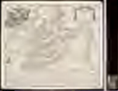 Topographia sedis imperatoriæ moscovitarum Petropolis anno 1744 designata / jam publici juris facta