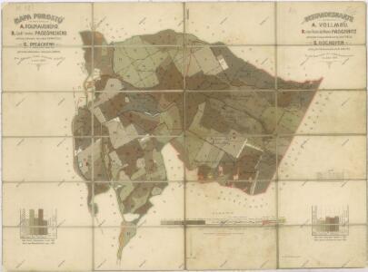 Porostní mapa revírů Folmava a Pasečnice a revíru Pec
