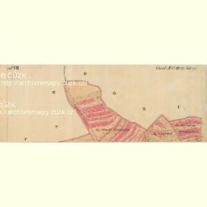 Nikolsburg - m1785-1-029 - Kaiserpflichtexemplar der Landkarten des stabilen Katasters