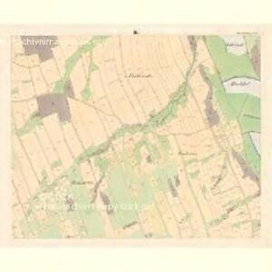 Alt Starzitz (Stary Stařic) - m2878-1-003 - Kaiserpflichtexemplar der Landkarten des stabilen Katasters
