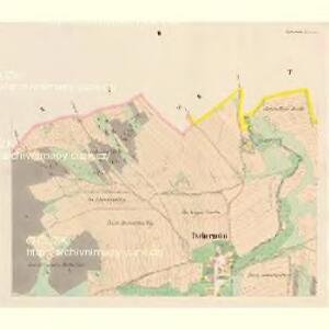 Tschernotin (Czernotin) - c0905-1-002 - Kaiserpflichtexemplar der Landkarten des stabilen Katasters