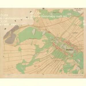 Buchen - c0649-1-003 - Kaiserpflichtexemplar der Landkarten des stabilen Katasters