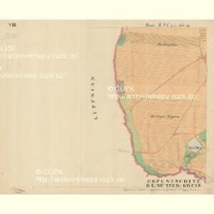 Trschitz - m3142-1-010 - Kaiserpflichtexemplar der Landkarten des stabilen Katasters