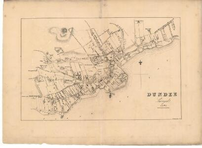 Plan of the Town of Dundee from actual survey.