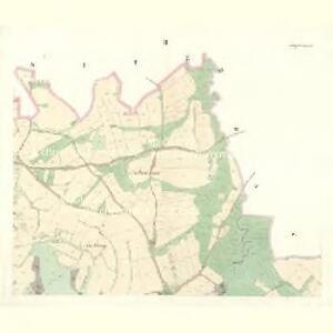 Wittiegitz (Wittiegic) - c8620-1-002 - Kaiserpflichtexemplar der Landkarten des stabilen Katasters