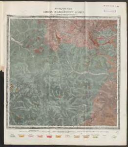[Geologische Karte der Umgebungen von Triberg und Donaueschingen]