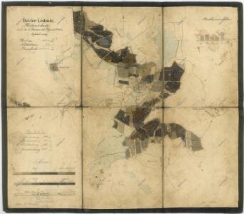 Porostní mapa polesí Ledenice 1