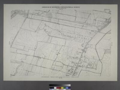 Sheet No. 21. [Includes (Graniteville) from South Avenue to Watchogue Road, and from Lisk Avenue to Kirshon Avenue.]; Borough of Richmond, Topographical Survey.