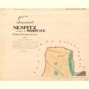 Nespitz - m1752-1-001 - Kaiserpflichtexemplar der Landkarten des stabilen Katasters